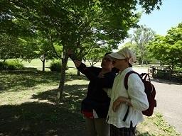 鈴の森公園2.jpg