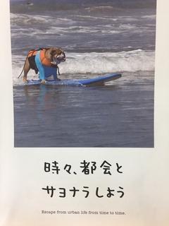 6月イメージカード.jpg