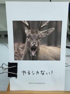 9月ポストカード.jpg
