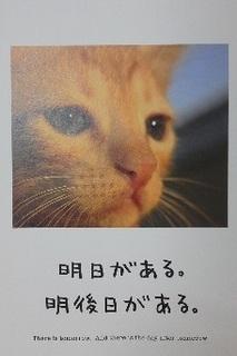 1月イメージカード.jpg