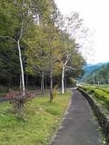 NCM_0783.JPG